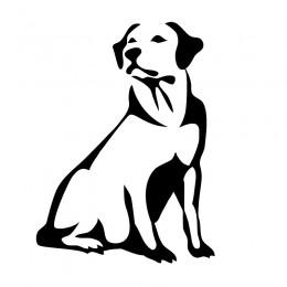 Samolepka pes v autě – Labrador